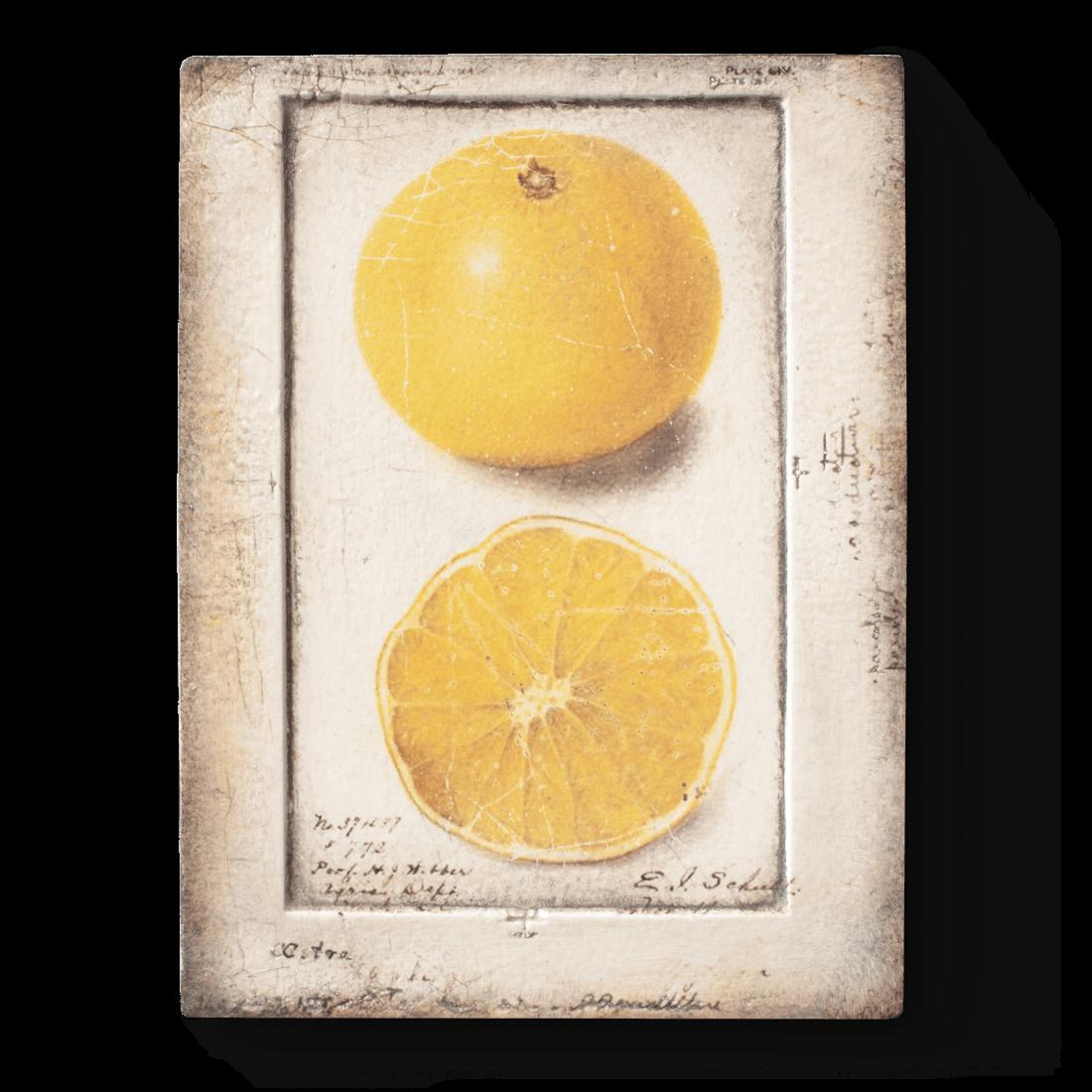 Citron, Sid Dickens