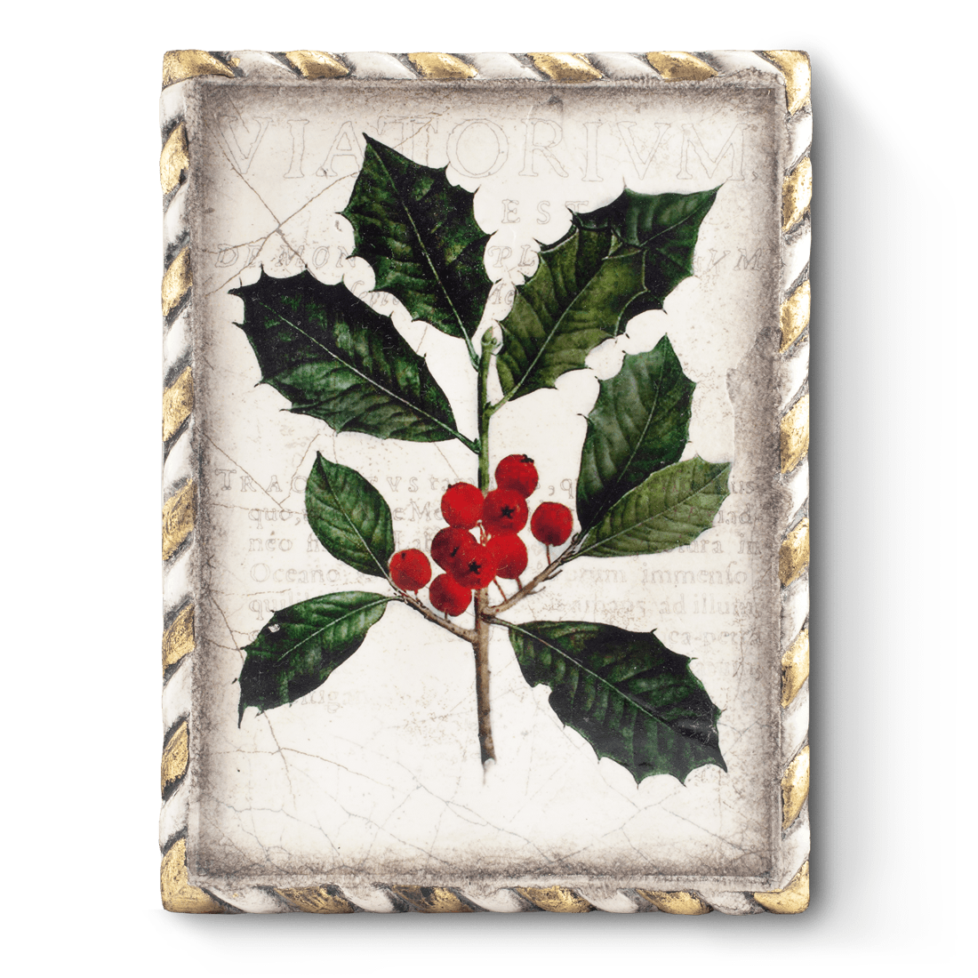 Winterberry, Sid Dickens