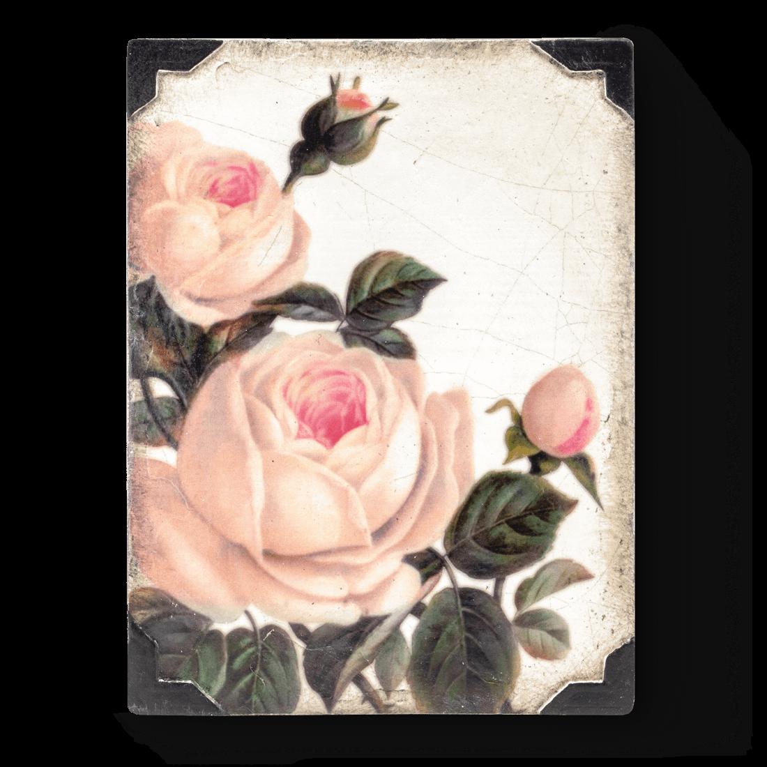 Gentle Rose, Sid Dickens