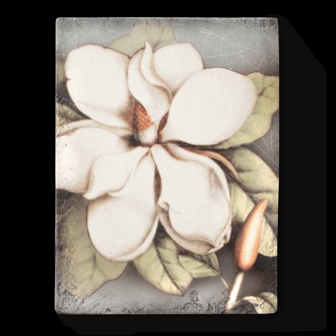 Magnolia, Sid Dickens