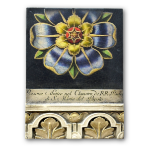 Sid Dickens - Ceiling Rose